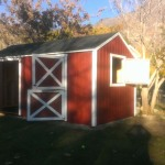 10′ x 20′ Barn Stable Shed